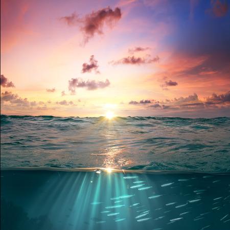 Caribe puesta del sol tropical hermosa plantilla de diseño cielo nublado. El agua de mar con rayos de sol y pescados plata debajo de la línea de flotación