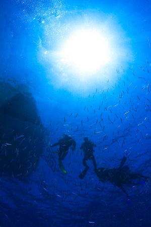 Red sea diving group of divers coming up to water surface through small fishes and bright sunlight Imagens