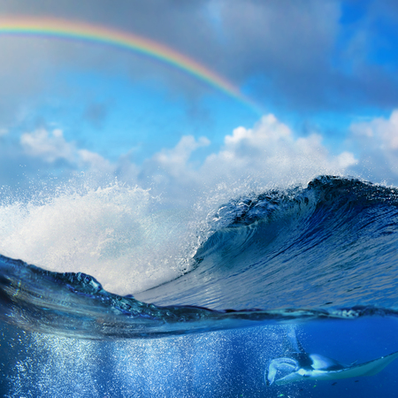 shorebreak: Oceanview splitted underwater side with mantaray surrounded by air bubbles and shorebreak big waves with colored rainbow