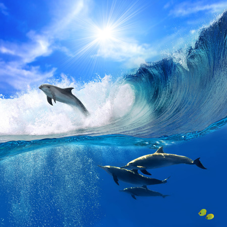 Oceanview mit Sonnenlicht. Eine Herde von verspielte Delfine unter Wasser schwimmen und eine von ihnen vom großen Meer Surfen Welle heraus springt