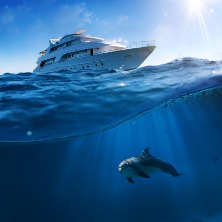 수 중 스플래시 수 선 그림 엽서 서식 파일에 의해입니다. 보트 아래에서 수영하는 Bottlenose 돌고래