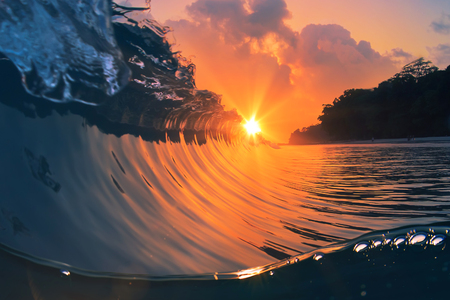 Beautiful colored breaking surfing ocean wave rolling down with sun inside the barrel.