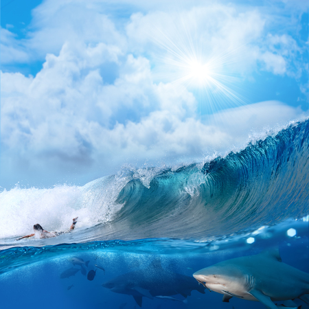 Splitted two parts image extreme story about the ocean and surfer on a surfing board breaking wave and two angry bull-sharks swiming underwater underneath him