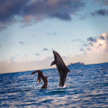 oceanview seaview with nice sea surface. Playful dolphins play with girl on water under cloudscape at sunset time Stock Photo