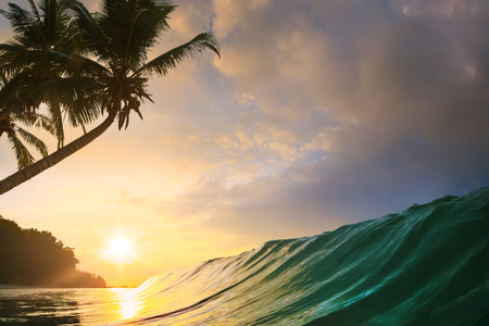 shorebreak: beautiful tropical palm beach with smooth colorful surfing wave under sunset Stock Photo