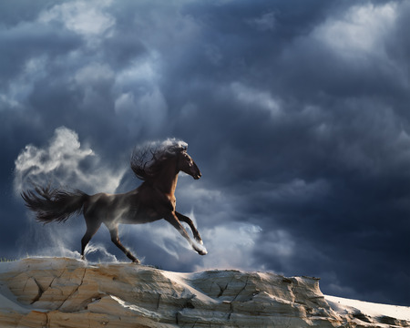lear: Running horse with streamed mane in a beautiful valley at sunset time with dark stormy clouds