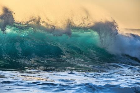 semitransparent: Beautiful Semi-transparent green-blue ocean wave. Hawaiian translucent Shorebreak at sunset time.