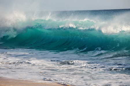 Beautiful Semi-transparent green-blue ocean wave. Hawaiian translucent Shorebreak at sunset time.