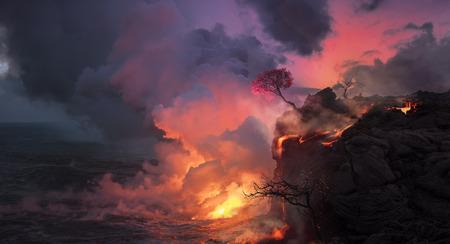 海岸から海に流れ込む溶岩の美しい風景、火山ビッグアイランド別名ハワイの海岸の端にピンクの花を持つ桜の木。