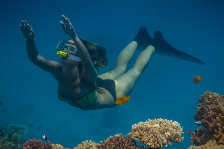 Marine aquatic background in Red sea water with freediving snorkeling model on blue background