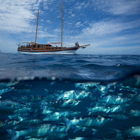 Fish underwater and boat on sea water surface against sky background