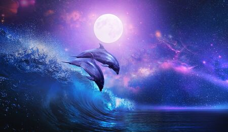Night ocean with a pair of beautiful dolphins leaping from sea on surfing wave and full moon shining on tropical background Archivio Fotografico