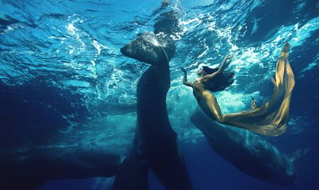 Brunette girl in Mermaid suit diving with whales in blue ocean water