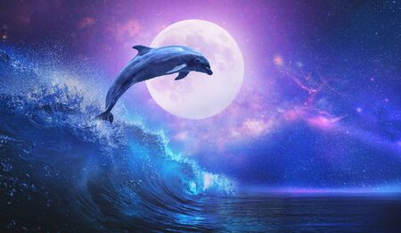 Night ocean with playful dolphin leaping from sea on surfing wave and full moon shining on tropical background Archivio Fotografico