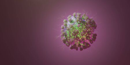 Macro model of Novel Coronavirus 2019-nCoV