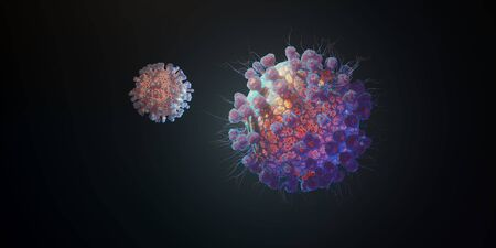 Macro model of Novel Coronavirus 2019-nCoV
