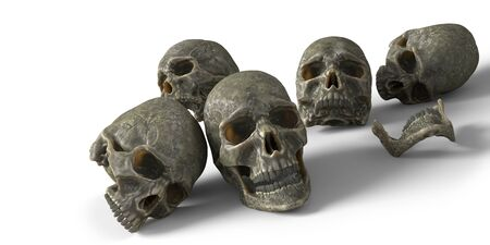 Human skulls with shadows isolated on white background