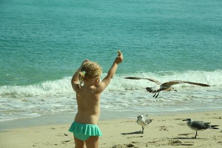 child feeding gulls