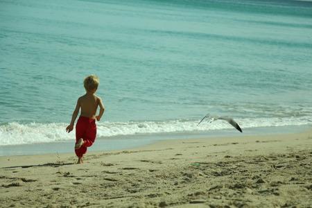 running child seagulls