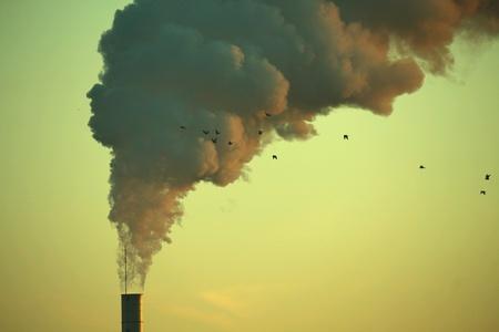 vapore acqueo: Migrazione tra il vapore acqueo