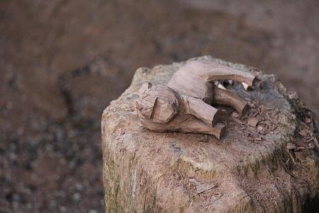animal vein: carved wood