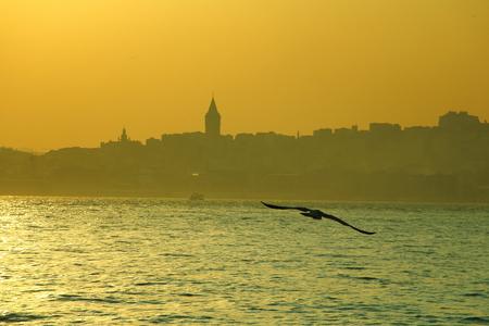 aya sofia: flying in bosphorus