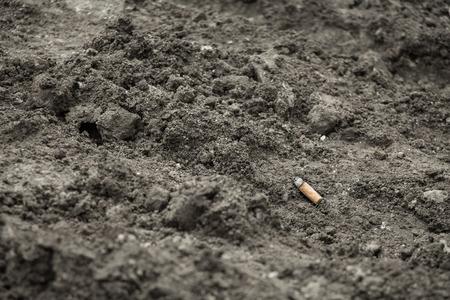 carcinogen: cigarette