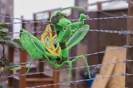 praying mantis made of wool