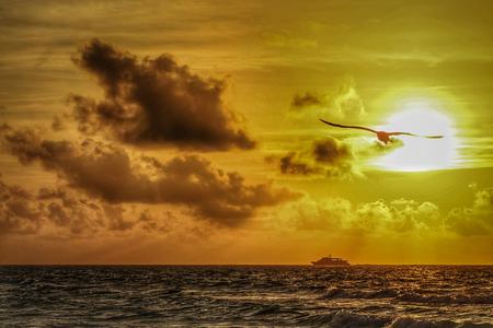 yacht sailing on the horizon at sunrise