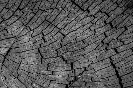 wood texture Standard-Bild - 119550283