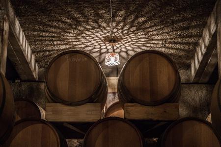 Oak barrels in underground cellar