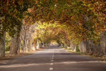 autumn route
