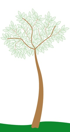 tree with foliage stylized Stock Vector - 9186226