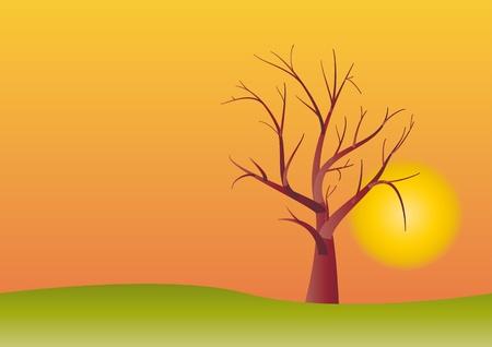 albero stilizzato: albero stilizzato nel tramonto  Vettoriali