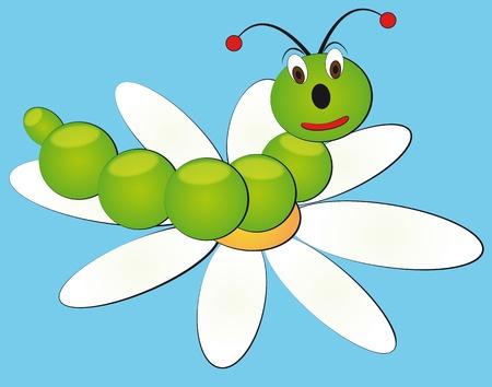 cartoon larva: illustration of cartoon grub with daisy in background