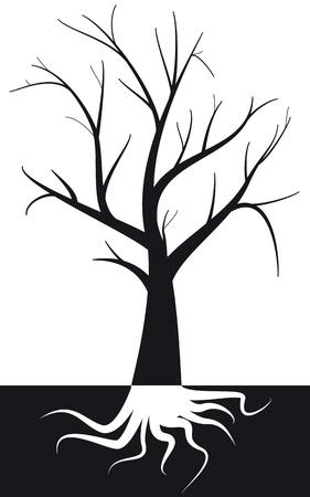 soils: illustrazione della struttura ad albero con radice sotto terra Vettoriali
