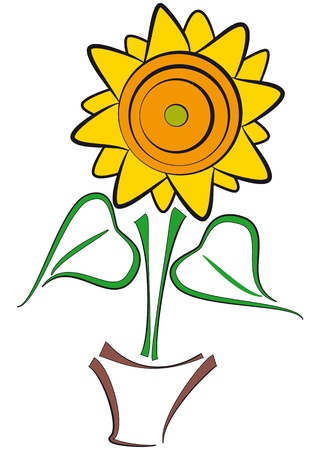 illustration of yellow sunflower with brown potflower Vector