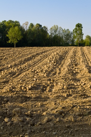 arable: area of arable land, The ploughed earth Stock Photo