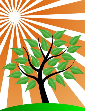 Tree stylized with red sunburst Vector