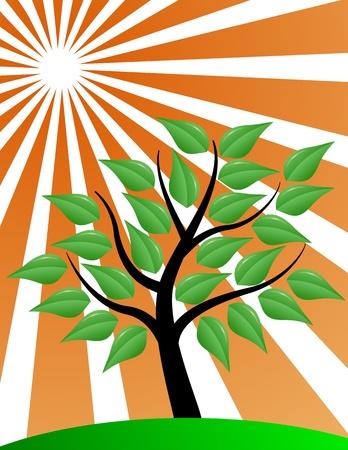 life style: Tree stylized with red sunburst