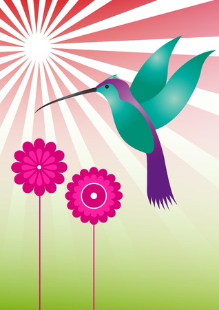 illustration of colorful hummingbird with violet flowers Vector