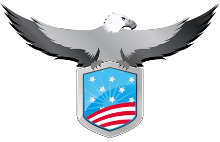 illustration of united of states shield with eagle  Vector
