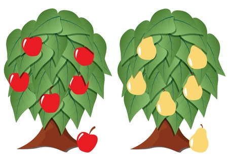 illustration of fruit tree stylized with green leafs Vector