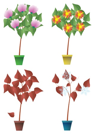 illustration of seasons plant with pot Stock Vector - 14295841