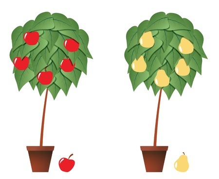 illustration of fruit plant with brown pot Vector