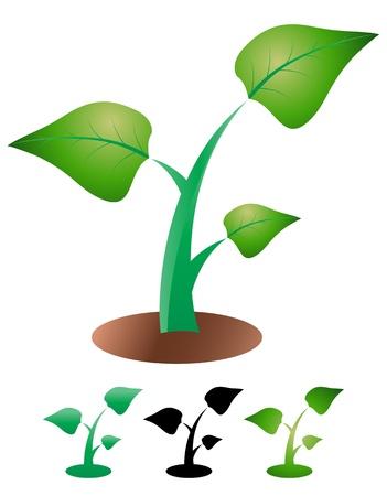 illustration of simple color leaf  Ilustração