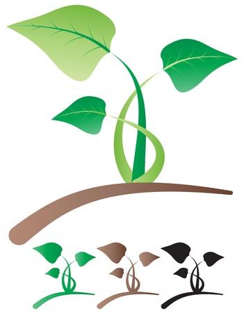 illustration of simple color leaf Stock Vector - 14381791