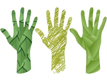 illustration set of green leaf in hand shape Stock Vector - 16260415
