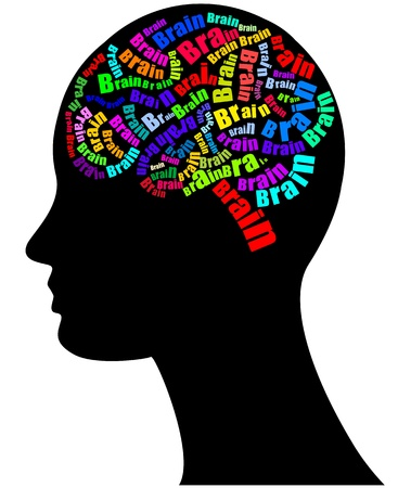 illustration of text brain with human head Stock Vector - 17334870
