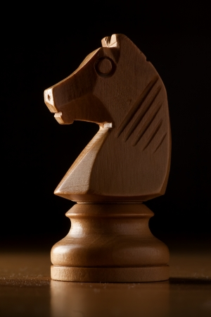 photography of white knight chess on wood table photo